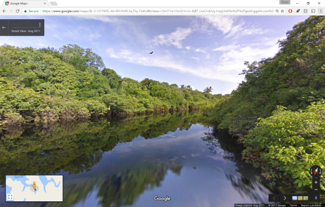 Amazon Rainforest, courtesy Google Maps